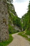 Camino entre los acantilados fotos de archivo libres de regalías