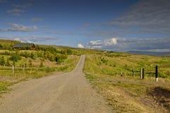 Camino escandinavo Fotos de archivo