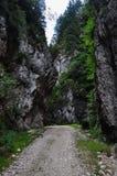 Camino estrecho Imagen de archivo libre de regalías