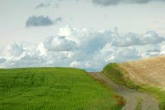 Camino fangoso 2 Fotografía de archivo
