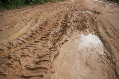 Camino fangoso horizontal de la selva de una opinión más amplia MCU de nivel del suelo con la pista del neumático y la vegetación Imagen de archivo
