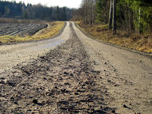 Camino forestal 2 Foto de archivo libre de regalías