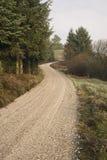 Camino forestal Imagenes de archivo