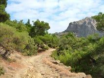 Camino forestal en Crimea Imagen de archivo libre de regalías