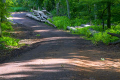 Camino forestal en el Mak de la KOH Imagen de archivo