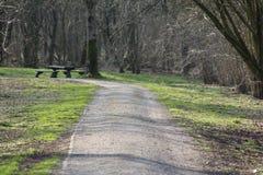 Camino forestal en el Mak de la KOH Fotografía de archivo libre de regalías