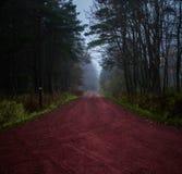 Camino forestal en Finlandia Fotos de archivo