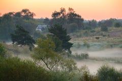 Camino forestal en la niebla de la mañana Fotografía de archivo