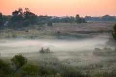 Camino forestal en la niebla de la mañana Foto de archivo
