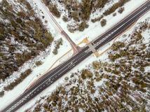Camino forestal en la opinión del invierno desde arriba Foto de archivo