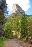Camino forestal a la montaña rocosa del ceahlau Fotos de archivo libres de regalías
