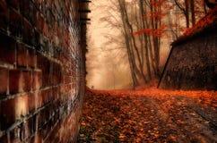 Camino forestal mágico, pared de ladrillo, colores del otoño, árboles Imagen de archivo
