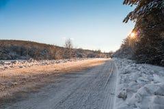Camino forestal nevado, primer imagen de archivo libre de regalías