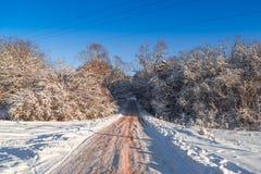 Camino forestal nevado, primer foto de archivo libre de regalías