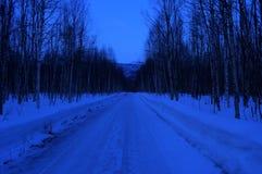 Camino forestal profundo en día de invierno azul Fotografía de archivo libre de regalías