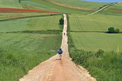 Camino Frances hiking pilgrims in rural landscape royalty free stock photo