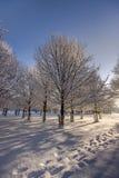 Camino fresco en nieve imagenes de archivo