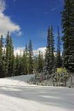 Camino fuera de Lake Louise Imagenes de archivo