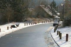 Camino gris con nieve Foto de archivo