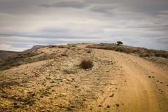 Camino hasta la montaña del puesto de observación Fotografía de archivo