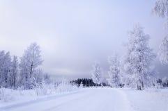 Camino helado Fotografía de archivo