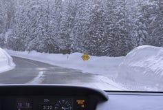 Camino helado en bosque nevoso del invierno fotografía de archivo libre de regalías