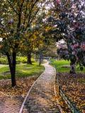 Camino hermoso Imagen de archivo