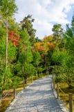 Camino hermoso del jardín imagenes de archivo