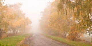 Camino hermoso del otoño en la niebla Imágenes de archivo libres de regalías