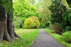 Camino hermoso del parque Fotografía de archivo libre de regalías