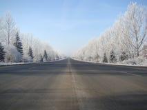 Camino ideal Imagenes de archivo