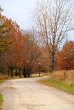 Camino inacabado en el otoño foto de archivo