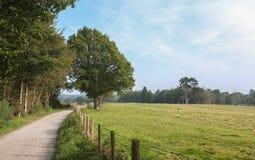 Camino inglés del campo Imagen de archivo libre de regalías