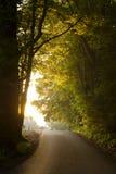 Camino a la luz Fotos de archivo