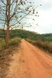 Camino a la manera del país Fotografía de archivo