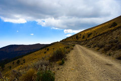 Camino. Largo camino al Nevado de Toluca en Mexico. Al final de vientos frios el horizonte muestra la luz de la llegada Stock Photo