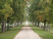 Camino largo brumoso Fotografía de archivo