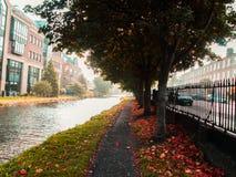 Camino largo romántico en otoño cerca del río Fotografía de archivo