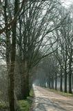Camino largo sin fin Foto de archivo libre de regalías