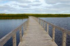 Camino a las dunas Fotografía de archivo libre de regalías