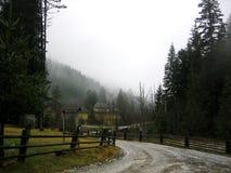 Camino lluvioso en la madera Foto de archivo libre de regalías