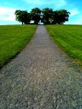 Camino a los árboles Foto de archivo libre de regalías