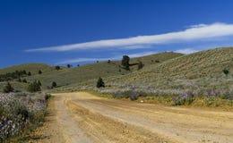 Camino a los rangos del Flinders fotos de archivo libres de regalías