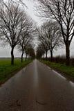 Camino mojado Fotografía de archivo
