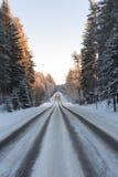 Camino nevado en bosque del invierno Fotos de archivo libres de regalías