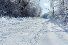 Camino nevado en el bosque en invierno Fotos de archivo