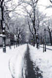 Camino Nevado en Viena imagenes de archivo