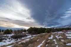 Camino nevoso de la suciedad que lleva al bosque del pino con el árbol solo y cielo dramático de la puesta del sol sobre la monta Fotos de archivo