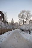 Camino nevoso del invierno Fotos de archivo libres de regalías