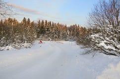 Camino nevoso del invierno con el puente que pasa a través de bosque de la picea por una mañana escarchada soleada fotos de archivo libres de regalías